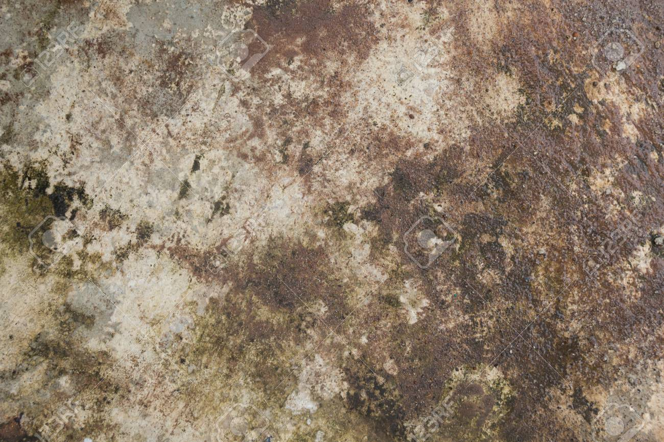 Les différents types de sol suivant l'humidité